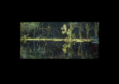 "Dorland Pond #19, 1982, oil on canvas, 24"" x 52"""
