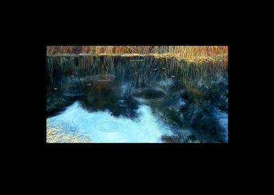 "Dorland Pond #21, 1982, oil on canvas, 18"" x 35"""