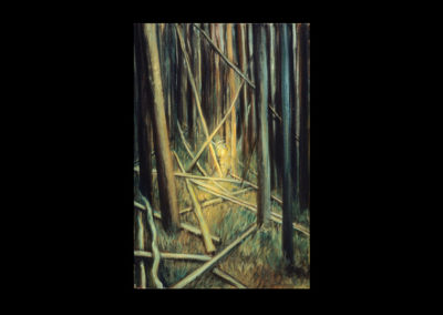 """Catching Light in the Forest, 1985, oil on canvas, 20"""" x 16"""""""