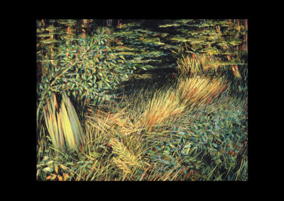 """Cantaloupe Light in the Forest, 1985, oil on canvas, 18"""" x 24"""""""