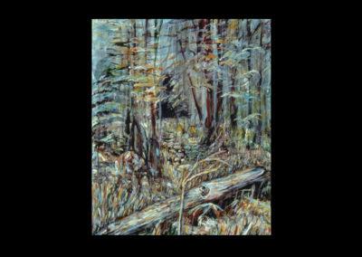 "Rim, Fallen Tree & Sapling #23, 1990, acrylic on linen, 20"" x 16"""